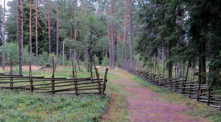 Östermoskogen