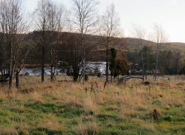 Stensjö säteri i Svenarums socken