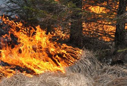 Extremt hög skogsbrandrisk i väst