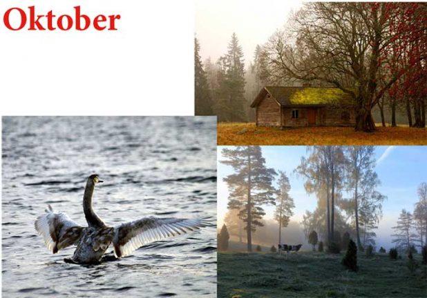 Finalbilderna för oktober