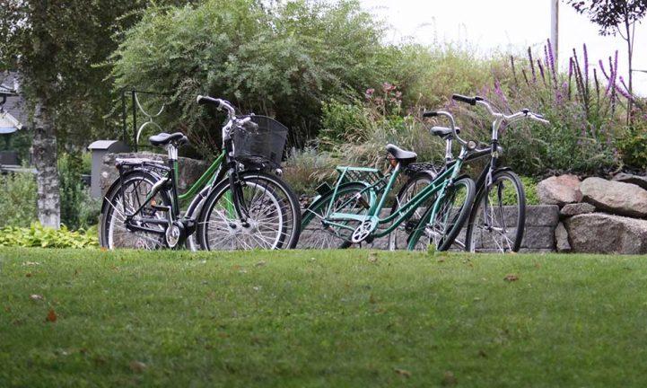 Fler och fler cyklar stjäls