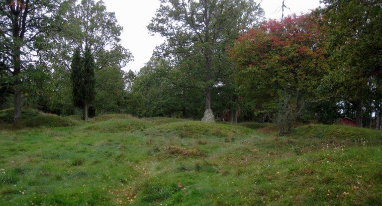 Stenhusholmen och kulturlandskapet vid Toftaholm