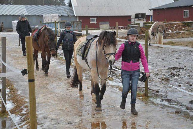 Sportlovet på hästrygg