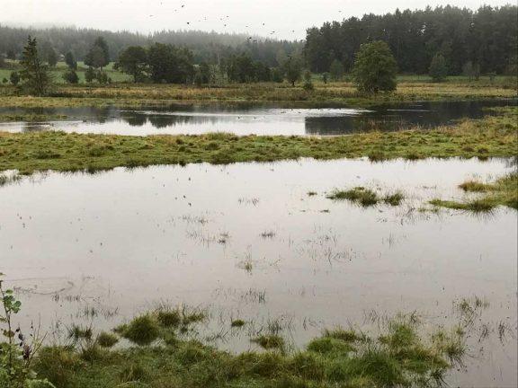 Översvämning i Svenarum