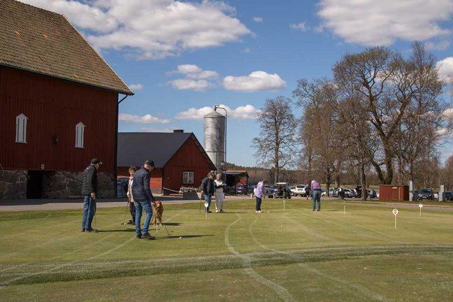 Sunda, starka och smarta seniorer testar golf
