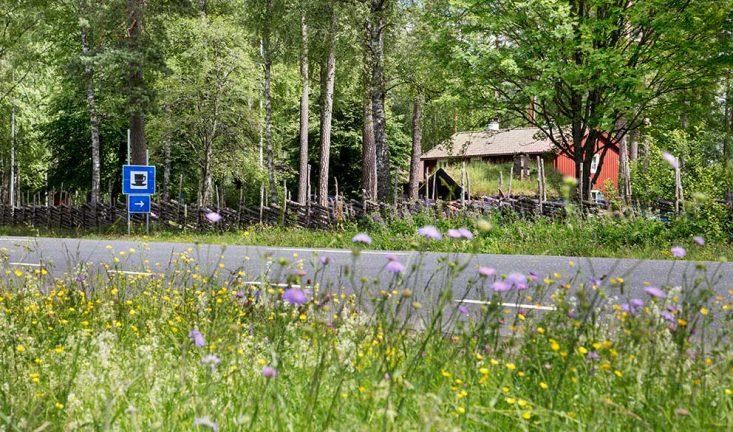 Mysigt sommarfika på Byarums Hembygdsgård