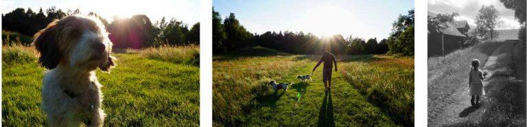 Sommartävlingen: Maja och Therese i fototagen