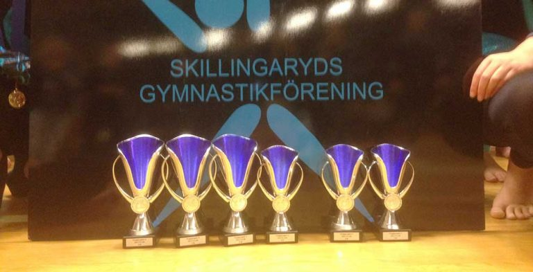 Fina framgångar för gymnaster