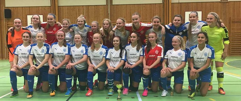 IFK-seger i cup