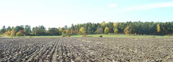Högsäsong stundar för lantbrukstjuvar