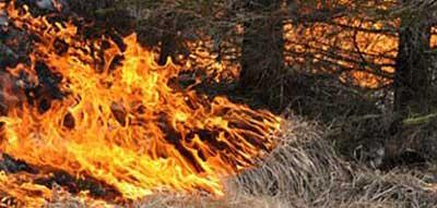 Skogsbrand i Bondstorp