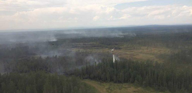 Tufft läge vid skogsbrand