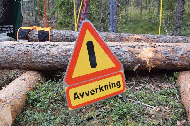 Önskar skötselplan för skogen