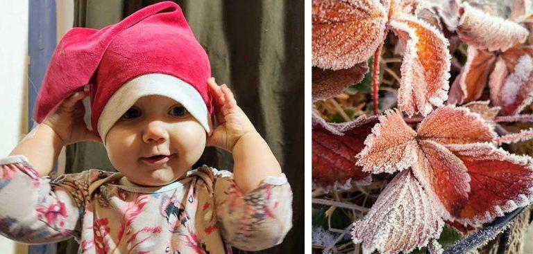 Martinas blogg: En julhälsning