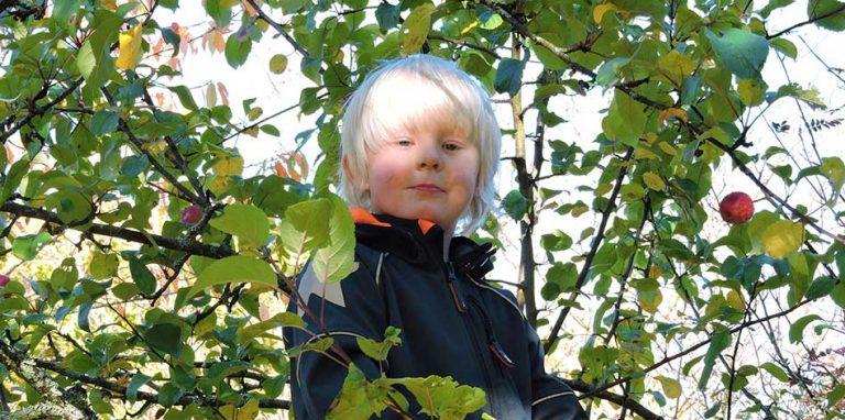 Oliwer Stjernqvist 6 år