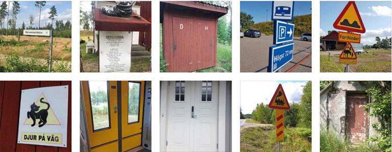 Fler bilder i sommartävlingen: 241–250