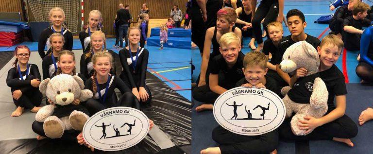 Duktiga unga gymnaster