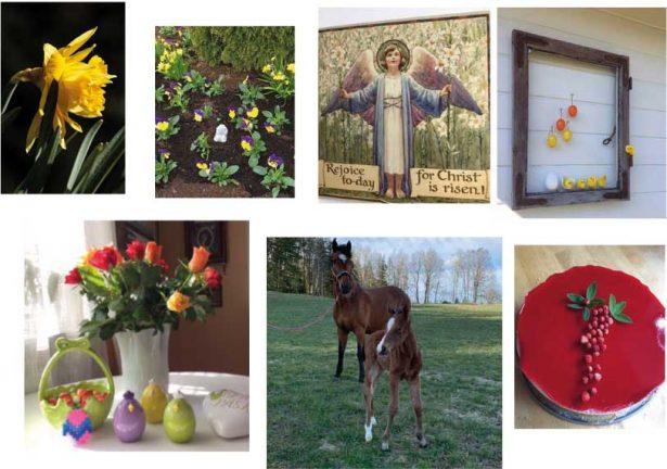 Sista påskbilderna: 104–112