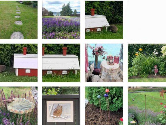 Sista bilderna i sommartävlingen presenteras