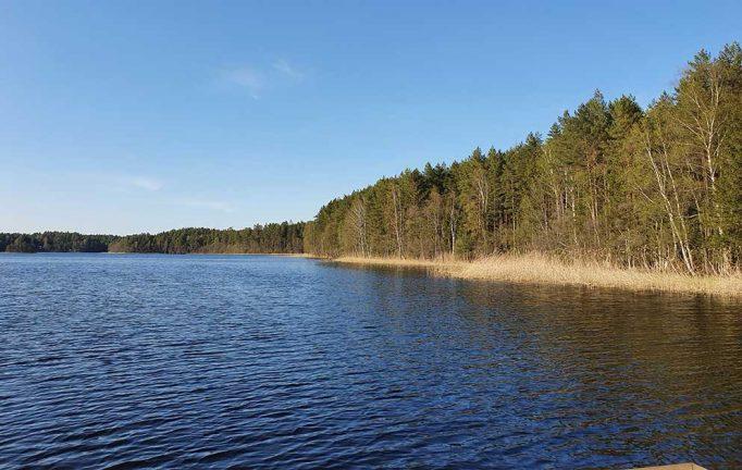 Vill förbjuda vattenskotrar på sjön